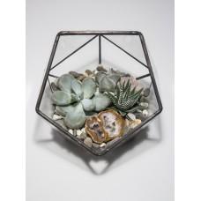 """Флорариум, сад в стекле""""Фит"""""""