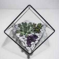 """Сад в стекле """"Ито"""", стеклянный флорариум"""